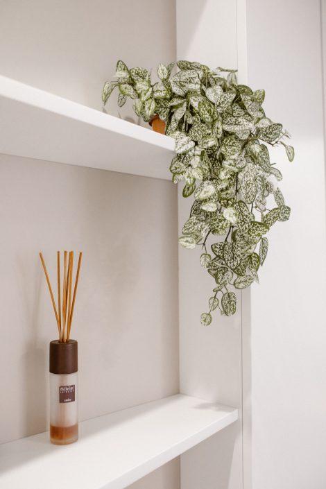 piante decorative mensole